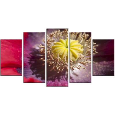 Colorful Opium Poppy Flower Photo Flowers WrappedCanvas Wall Artwork - 5 Panels
