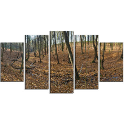Woods in Fall Forest Panorama Forest Wrapped Art Print - 5 Panels