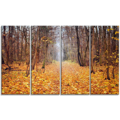 Designart Yellow Fallen Leaves in Morning Landscape Photography Canvas Print - 4 Panels