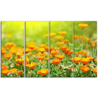 Yellow Marigold Flowers Floral Canvas Art Print -4 Panels