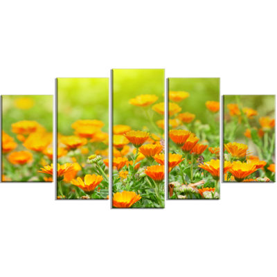 Designart Yellow Marigold Flowers Floral Wrapped Art Print -5 Panels