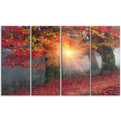 Designart Yellow Sun in Red Autumn Forest Landscape Photography Canvas Print - 4 Panels