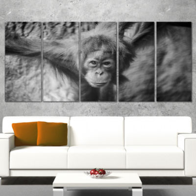 Designart Young Orangutan Black Abstract Canvas Art Print -5 Panels