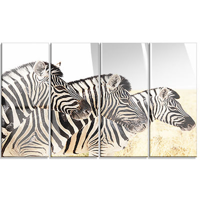 Zebras in A Row in Grassland African Wall Art Print - 4 Panels