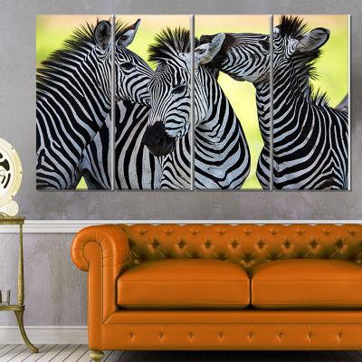 Designart Zebras Socializing and Kissing African Canvas ArtPrint - 4 Panels