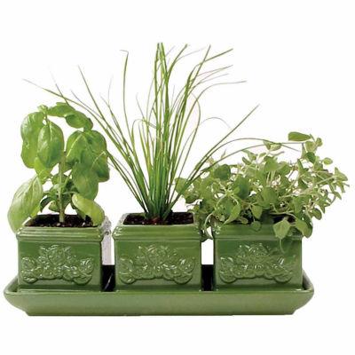 Toysmith Garden At Home Easy-To-Grow Italian HerbSet