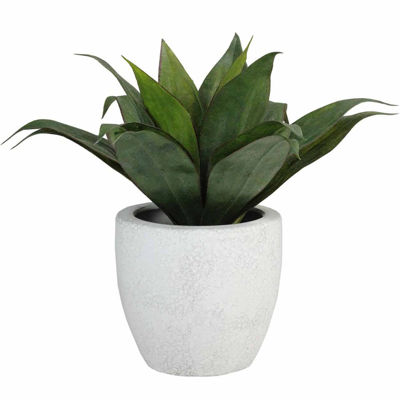 """13"""" Artificial Agave Plant in Weathered White Ceramic Pot"""""""