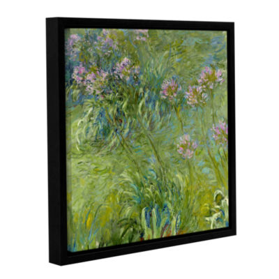 Brushstone Agapanthus 2 Gallery Wrapped Floater-Framed Canvas Wall Art
