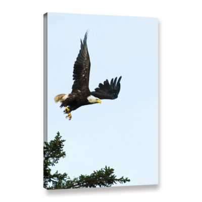 Brushstone Bald Eagle Lift Off Gallery Wrapped Canvas Wall Art