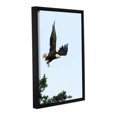Brushstone Bald Eagle Lift Off Gallery Wrapped Floater-Framed Canvas Wall Art