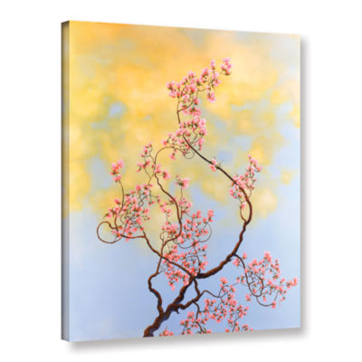 Brushstone Brushstone Dawn Gallery Wrapped CanvasWall Art