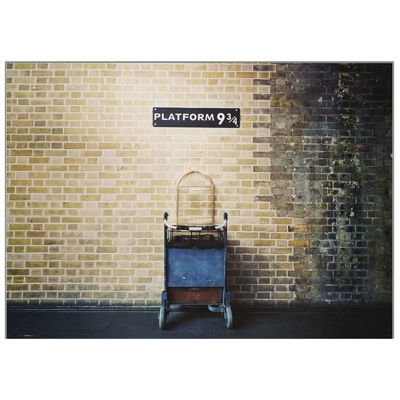 Platform 9 3/4 Backdrop 61 x 43