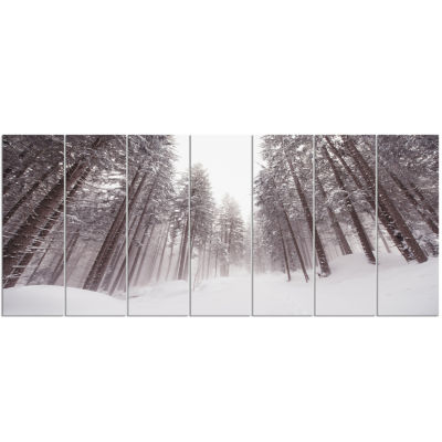 Winter Scenery In Trentino Alto Adige Large ForestCanvas Art Print - 7 Panels