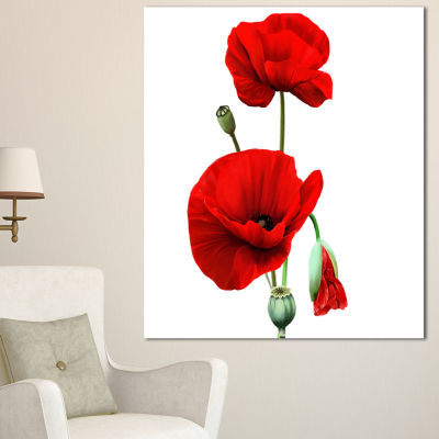 Designart Red Poppies On White Background FloralCanvas Art Print