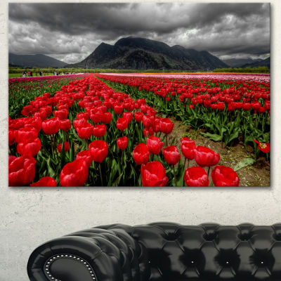 Designart Rows Of Bright Ruby Red Tulips Large Landscape Canvas Art