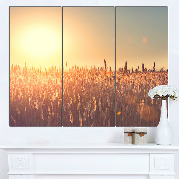 Design Art Rural Land Under Shining Sun Large Landscape Canvas Art - 3 Panels