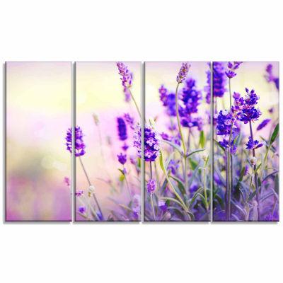 Designart Purple Lavender Field Floral PhotographyCanvas Art Print - 4 Panels