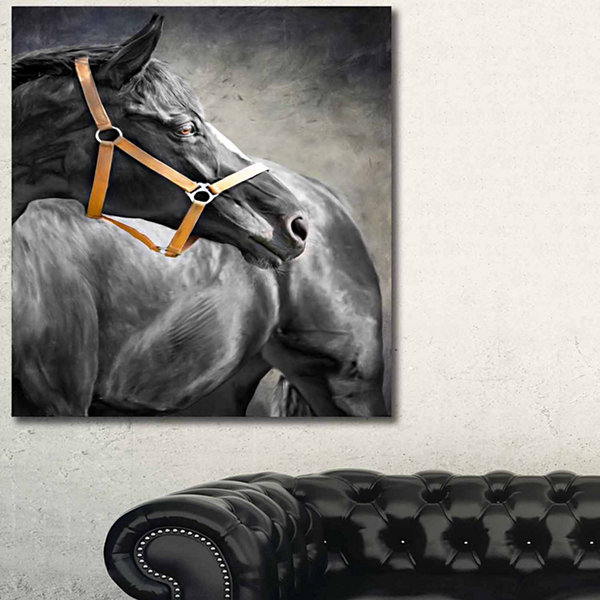 Designart Black Horse Animal Art On Canvas