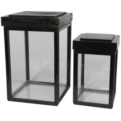 "Set of 2 Botanic Beauty Lidded Black Fir Wood Display Boxes 16.5"""