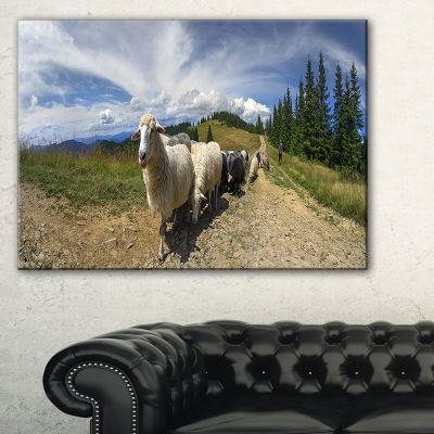 Designart Shepherd And Sheep Of Carpathian Landscape Photography Canvas Print - 3 Panels