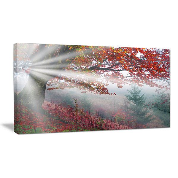 Design Art Silver Rays Of Sun After Storm LandscapePhotography Canvas Art Print
