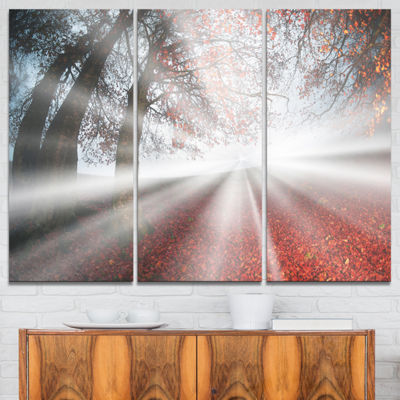 Designart Silver Sun Rays To Foggy Forest Landscape Photo Canvas Art Print - 3 Panels