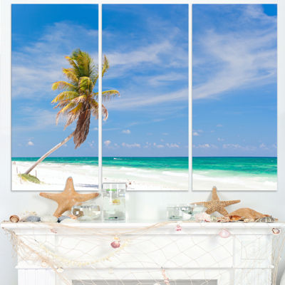 Designart Solitary Coconut Palm At Beach SeashorePhoto Canvas Print - 3 Panels