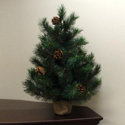 "2' x 17"" Royal Oregon Long Needle Pine ArtificialChristmas Tree in Burlap Base -Unlit"""