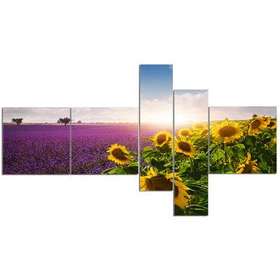 Designart Lavender And Sunflower Fields Canvas ArtPrint - 5 Panels