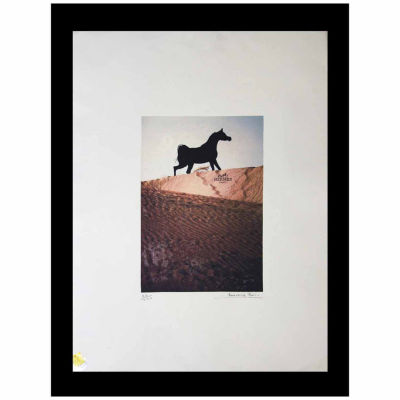 Fairchild Paris Hermes Horse (569) Framed Wall Art
