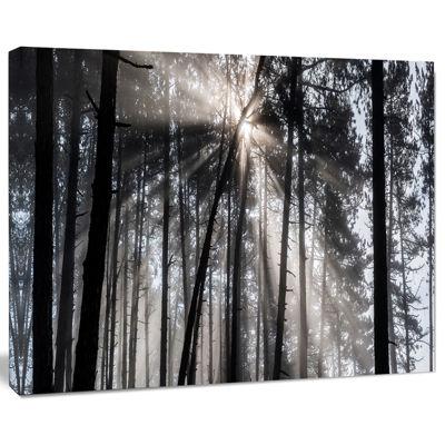 Design Art Sunbeams Through Black White Forest Canvas Wall Art Print