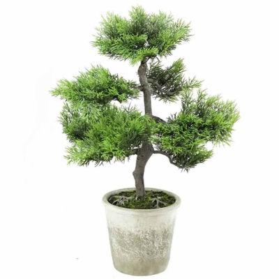 "20.25"" Decorative Artificial Japanese Bonsai Treein Distressed Gray Pot"