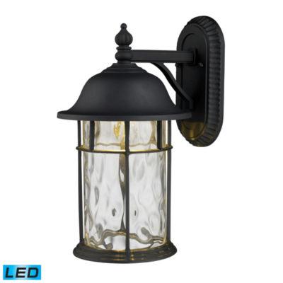 Lapuente 1-Light Outdoor LED Wall Sconce In MatteBlack