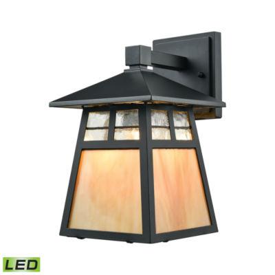 Cottage 1-Light LED Outdoor Wall Sconce In Matte Black