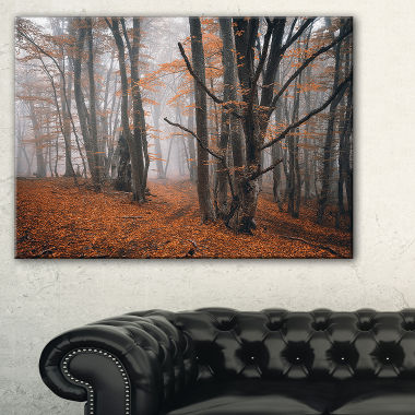Design Art Fall Trees With Fallen Leaves Landscape Photography Canvas Print