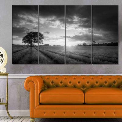 Designart Vibrant Black White Lavender Field Landscape Canvas Art - 4 Panels
