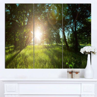 Designart Sunny Day In Green Forest Meadow Landscape Canvas Art - 3 Panels