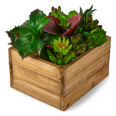 JCPenney Home Medium Wood Plant Box