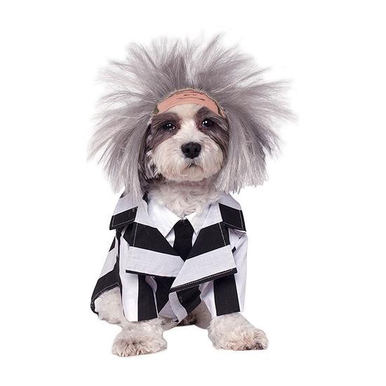 Buyseasons Beetlejuice Pet Costume