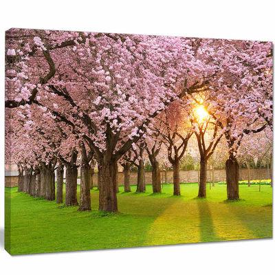 Design Art Fascinating Springtime Cherry Scenery Landscape Canvas Art Print
