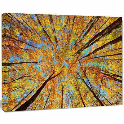 Designart Tree Tops In Autumn Forest Canvas Art Print