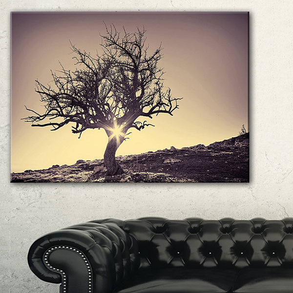 Designart Lonely Grey Tree In Mountain Wall Art Landscape