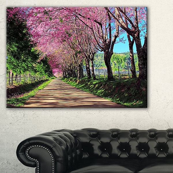Designart Cherry Blossom Pathway In Chiang Mai Landscape Canvas Art Print