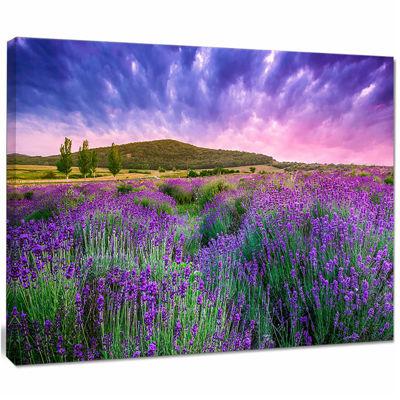 Design Art Summer Lavender Field In Tihany Modern Landscape Wall Art Canvas