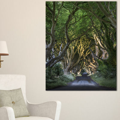 Design Art The Dark Hedges Landscape Photography Canvas Art Print