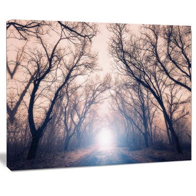 Design Art Mysterious Sunlight In Forest Landscape Photo Canvas Art Print