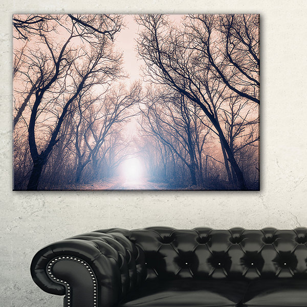 Designart Mysterious Sunlight In Forest LandscapePhoto Canvas Art Print