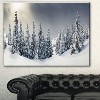 Design Art Winter Landscape Photography Canvas Art Print