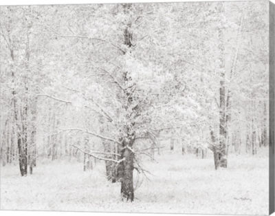 Metaverse Art Snow Covered Cottonwood Trees CanvasArt