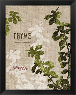 Metaverse Art Organic Thyme No Butterfly Framed Print